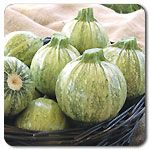 "Organic Ronde de Nice - HEIRLOOM Green with white speckling, these round zucchinis from the south of France have long been a fresh market favorite. Harvest when they are a bit larger than golf balls or even larger to stuff with your favorite filling. Best flavor is when 3-4"" in diameter. Freezes well. (Cucurbita pepo)  Days to maturity: 52 days"
