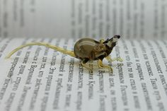 Miniature animals in blown glass handmade by Glass Symphony
