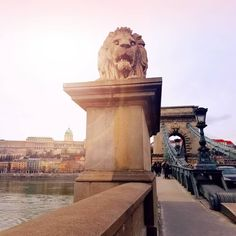 16 most beautiful places in budapest – the migrant yogi Liberty Bridge, Budapest City, Buda Castle, Danube River, Photo Checks, Perfect Photo, World Heritage Sites, Tower Bridge, City Photo