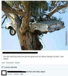 Technically Ron and Harry were flying a Ford Anglia, not a Ford Falcon.