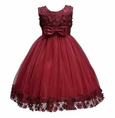 First Communion Dresses for Girl Party Birthday Pageant Dresses Size 10 Baby Toddler Clothes Sleeveless Summer Dress Appliques O Neck Clothing Lace Tulle Mesh Tutus for Girls Wine Red (Burgundy, Red Flower Girl Dresses, Tulle Flower Girl, Girls Lace Dress, Red Wedding Dresses, Girls Formal Dresses, Girls Party Dress, Summer Dresses, Lace Dresses, Tulle Wedding