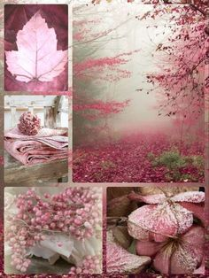 Gorgeous shades of earthy, dusty plum and pink. Gorgeous shades of earthy, dusty plum and pink. Colour Schemes, Color Trends, Color Combos, Color Patterns, Decoration Shabby, Color Collage, Beautiful Collage, Mood Colors, Everything Pink