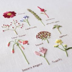 Hand Embroidery Projects, Hand Embroidery Art, Floral Embroidery, Embroidery Stitches, Embroidered Clothes, Embroidered Flowers, Quilt Stitching, Fall Flowers, Needle And Thread