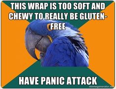 "Post captioned with ""So I decided to trust the caterer's gluten-free option, turns out in the end it was ok, but..."" From the GLUTENFREEMEMES subreddit here: http://www.reddit.com/r/glutenfreememes/comments/q4056/so_i_decided_to_trust_the_caterers_glutenfree/ (More Paranoid Parrots here: http://knowyourmeme.com/memes/paranoid-parrot )"