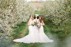 Hochzeitliches Frühl