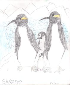 Penguin family Drawing w/ watercolor pencils. *Sallie Brown Drawings* #penguins #salliebrownart #art
