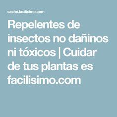 Repelentes de insectos no dañinos ni tóxicos | Cuidar de tus plantas es facilisimo.com