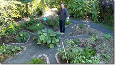 Permaculture for urban and small garden growers