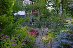 One path in garden