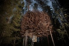 Treehotel, Sweden - Deep in a Swedish forest, some of  Scandinavias most talented architects have created game-changing, uniquely designed and themed tree house hotels. The Birds Nest room is just what its name implies: Chaotic and complex interlocking tree branches mimic a birds nest on the outside.