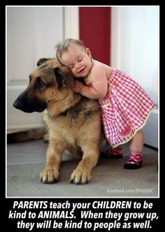 It takes nothing  from a prople  to be kind to an animal