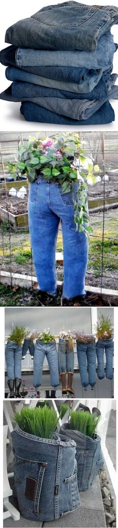 World In Green - Jeans as planters!