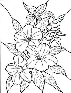 This may be his own drawings or could be pages of any coloring book. Description from hellocoloring.com. I searched for this on bing.com/images: