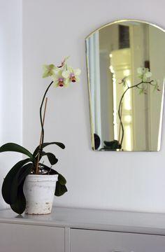 Kaunis orkidea, vanha peili, maalattu liinavaatekaappi