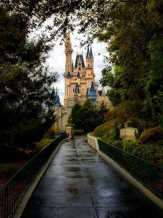 Cinderella Castle at Walt Disney World Resort, Lake Buena Vista, Florida (by Express Monorail).