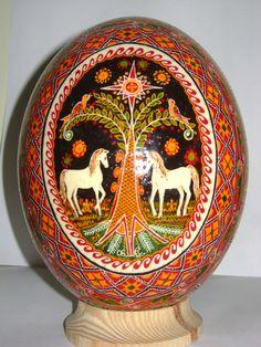 Ostrich Pysanka Egg
