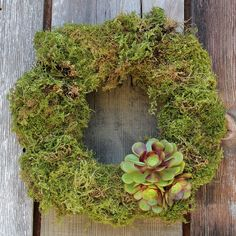 Moss Wreath with Succulent Bow