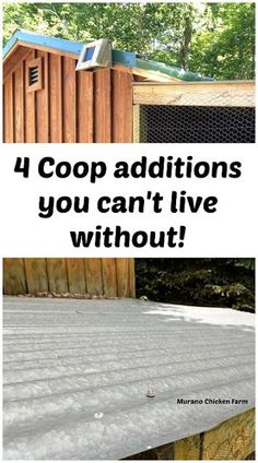 4 absolutely must have chicken coop additions! Once you get these 4 things, you won't know how you lived without them! #backyardchickens #chickens #chickencoop