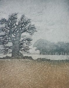 Winter Trees - etching - Laurie Rudling, U.K.