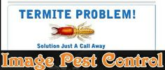 termite problem just contact image pest control