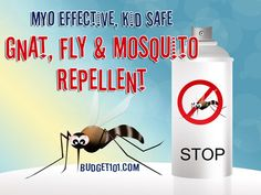 Gnat Fly Mosquito Repellent: 2 tablespoons vanilla extract (not the fake stuff) 2 cups water Combine ingredients in a small spray/ spritz bottle, shake well to combine. To use, apply liberally, avoiding the eyes. This blend works well on Horses and dogs too.