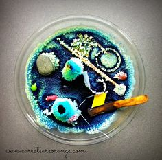 {Sulia Original} 4 Questions to Always Ask Children When Doing Early Childhood Science Experiments