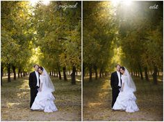 Chic Critique Forum | Photography Tutorial | Create sun rays in Photoshop