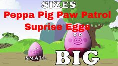 Peppa Pig Paw Patrol Surprise Eggs Learning | Sizes Distance height Lear...