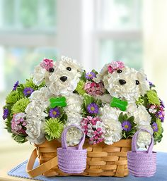 Price:  US$79.99    Two's company with our delightful, double-sized a-DOG-able® bouquet. Ideal for surprising your best friend, sister, Mom or any close friend, this playful pair of puppy-shaped white carnation arrangements is surrounded by a gathering of colorful fresh blooms