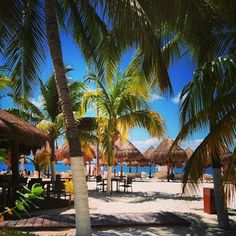 Privilege Aluxes Hotel Isla Mujeres | Webstagram - the best Instagram viewer