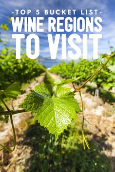 Through beautiful photos and insight into some of the worlds most exotic wine regions and landscapes, discover these beautiful and enchanting wine regions currently on our travel list.