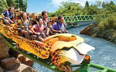 Busch Gardens Disney