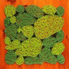 Vypletané machy na teaku 60 x 60 Moss Art, Teak, Fruit, How To Make