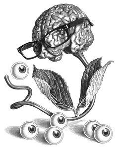 Olivia Knapp.. https://redespress.wordpress.com/2015/08/17/el-regreso-a-la-ilustracion-cientifica/