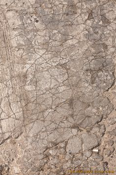 Cracked and dirty concrete texture - http://thetextureclub.com/grunge-2/cracked-and-dirty-concrete-texture