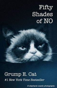 Best book ever... 50 shades of NO by Grump E. Cat