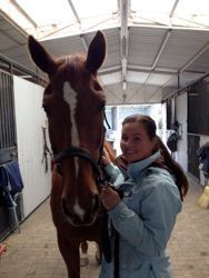 What it's like to be an equine massage therapist! visit proequinegrooms.com