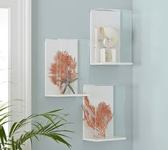 """Shadow Box Frame 