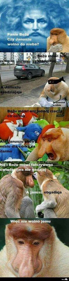 Na Bestach znajdziesz codziennie nowe obrazki, filmy oraz ciekawostki znalezione w sieci :) New Memes, Funny Memes, Jokes, Polish Memes, Bad Mood, Pusheen, Hetalia, Animals And Pets, I Laughed