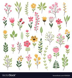 Colorful floral collection with leaves and flowers vector 4383224 - by Lenlis on. - Colorful floral collection with leaves and flowers vector 4383224 – by Lenlis on VectorStock® Co - # Pattern Design Drawing, Flower Pattern Design, Flower Patterns, Flower Designs, Design Patterns, Design Of Flowers, Pattern Ideas, Flower Pattern Drawing, Art Floral
