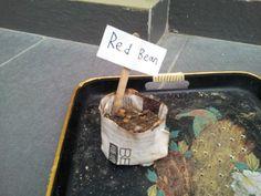 "Felix Low Std 3S, ""SquAIR Roots"", ""KEW MSB"", Shah Alam, Sekolah Sri Tenby & 29 March 2014"
