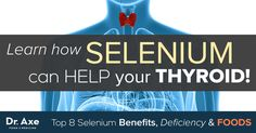 Selenium benefits your body by helping to prevent common forms of cancer, fight off viruses, defend against heart disease, and to slow down symptoms such as Thyroid Issues, Thyroid Cancer, Thyroid Disease, Autoimmune Disease, Heart Disease, Low Thyroid, Selenium Benefits, Adrenal Health, Homeopathic Medicine