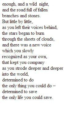 """so beautiful. """"... the stars began to burn through the sheets of clouds."""" love me some mary oliver."""