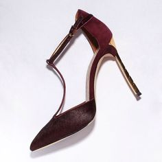 Introducing the 'Smithfield' - that sexy burgundy heel featured in our new Kate Upton FW14 campaign. Now available at samedelman.com