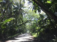 Auf dem Weg in den Kaimu Beach Park liegen ein paar Plätze die so unglaublich schön sind, das ich am liebsten dort hin ziehen würde. Leider weis ich nicht wie viel davon noch existiert nachdem im Frühling 2018 der Vulkan Kilauea ausgebrochen ist...