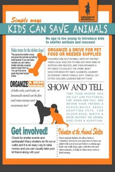 Simple Ways Kids Can Save Animals!  Teach love and compassion to children! ♥