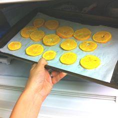 Frozen orange slices as a summer snack!