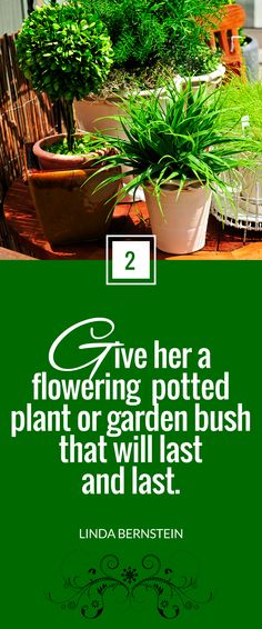 """""""Give her a flowering potted plant or garden bush that will last and last."""" ~ @Linda Bernstein  for @Next Avenue"""