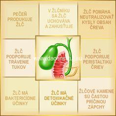 Tradičná čínska medicína (TČM): Pečeň a žlčník - I. http://dao-fengshui.eu/podujatie/tradicna-cinska-medicina-tcm-pecen-zlcnik/