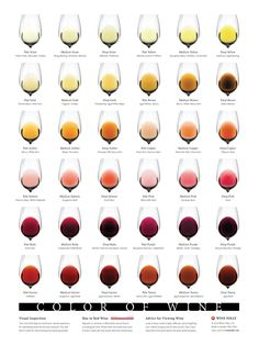 """This beautiful art print displays the Color of Wine with over 36 unique professionally recognized hues in wine. Available as an 18"""" by 24"""" poster print. Learn how to assess quality and improve your blind tasting abilities."""